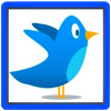 Twit Pro for Twitter HD per iPad