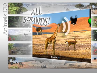 Animals 100 suoni