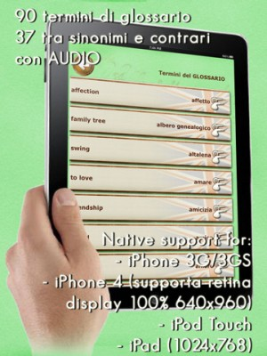 100 lezioni iPad