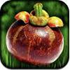 Superfood HD per iPad