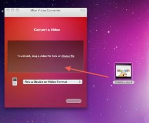 Guida alla copia e conversione di video nella memoria dell'Apple iPad