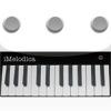 iMelodica for iPad per iPad