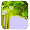 Memories - Photo Frame - per iPad