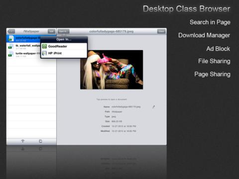 Mercury Web Browser Pro per iPad si aggiorna alla versione 5.0.3