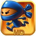 Ninja Pong HD per iPad