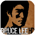 Bruce Lee Dragon Warrior HD per iPad